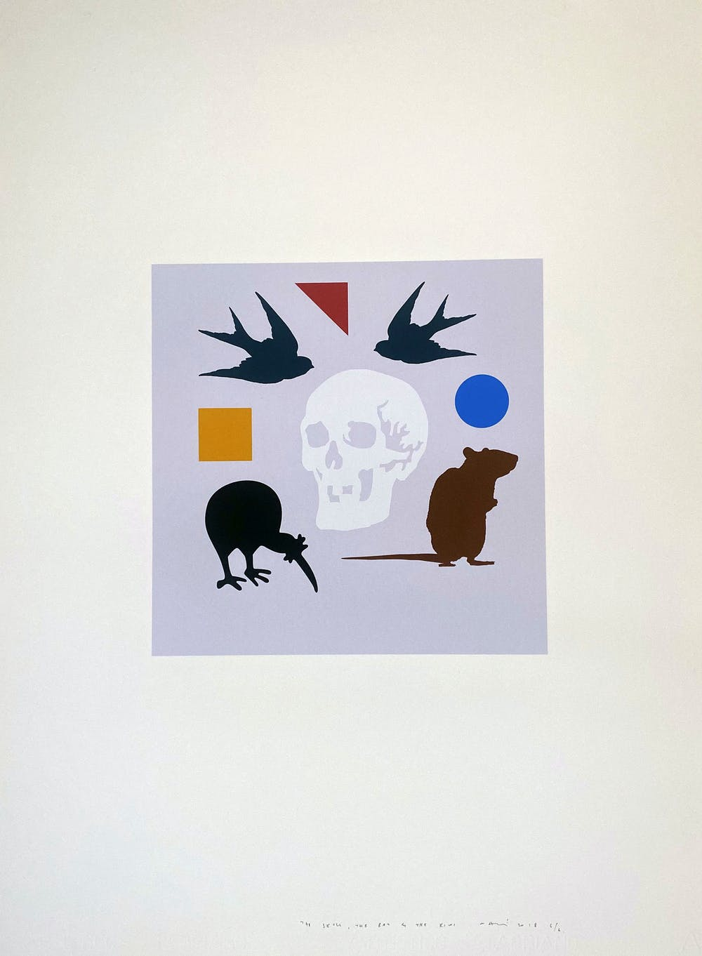 The Skull the rat and the kiwi